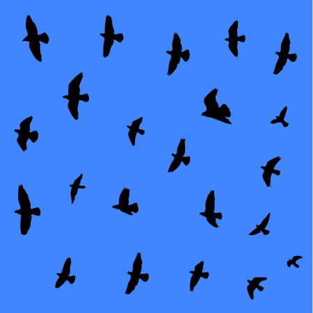 swooping: Flying birds seamleas background  Illustration