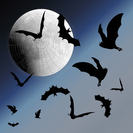 Background with night sky, moon, web and bats Stock Vector - 18344176