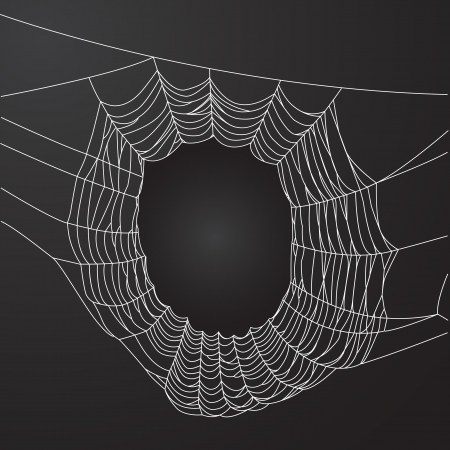 Spider web frame Vector