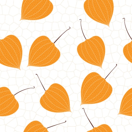 Physalis, retro seamless background Stock Vector - 20324481