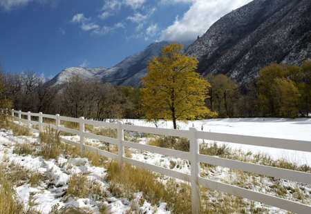 hobble: First substantial snow of the year in Hobble Creek Canyon, Utah. Stock Photo