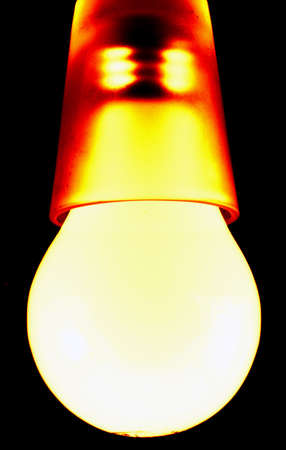 A picture of a orange-yellow colored bulb in a shot glass