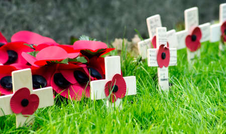 A remembrance day poppy on a cross  photo