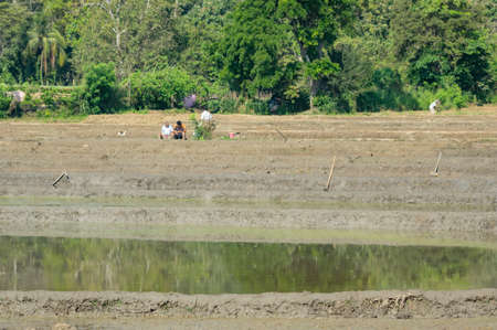 Men resting while working in a rice field in Sri Lanka.