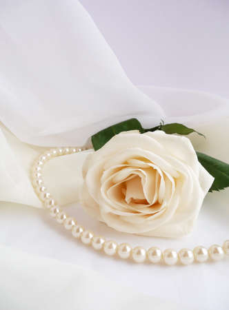 white rose with beads Stock Photo - 10332607