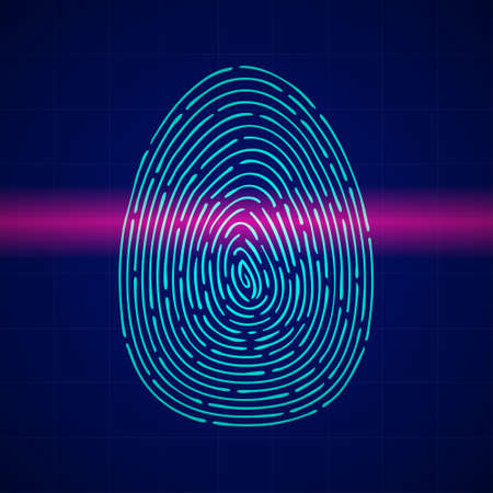 Scanning fingerprint with red laser. Biometric beam travels through skin lines of blue thumb verifying authorization and vector identification. Ilustración de vector