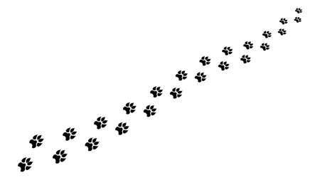 Chain footprints in snow large animal clipart. Black prints predatory beast with wide paws and sharp claws leaving vector pursuit.