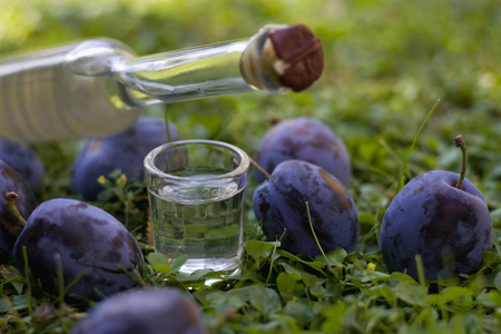 Plum brandy or Schnapps with fresh and ripe plums Stock Photo