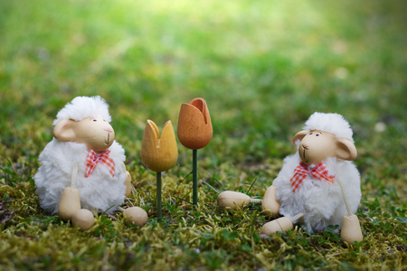 two toy sheep looking forward to Easter lambs sitting in the grass enjoying the spring in the garden with two wooden tulips at Sunlight Stock Photo
