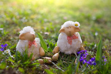 Easter lambs sitting in the grass, happy sheep toy looking for Easter.  Stock Photo
