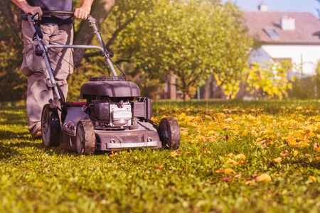 Cortar el césped con una cortadora de césped en el jardín a principios de otoño. Cubriendo el césped en el patio trasero.