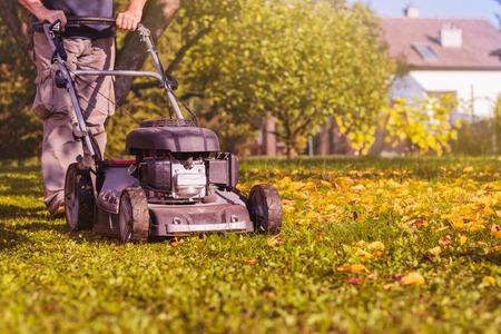 Falciare l'erba con un tosaerba in giardino all'inizio dell'autunno. Pacciamatura dell'erba nel cortile.