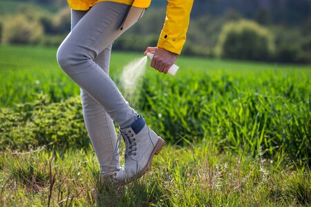Woman hiker spraying insect repellent against tick on her legs and boots. Tourist applying mosquito repellent