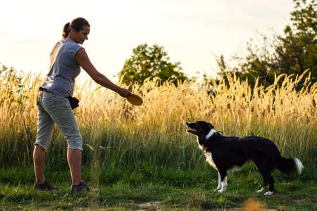 Woman playing with her dog outdoors at summer. Pet owner throwing flying disk to border collie. Animal obedience training