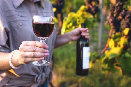 Woman drinking red wine at vineyard. Female farmer holding wineglass and bottle and tasting her homemade wine