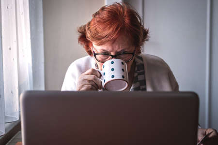 Senior woman using laptop and drinking coffee at home. Elderly people surfing the net, reading e-mail or news online and browsing social media Stock fotó
