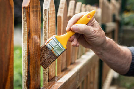 Painting protective varnish on wooden picket fence at backyard. Man paint wood stain at timber plank outdoors