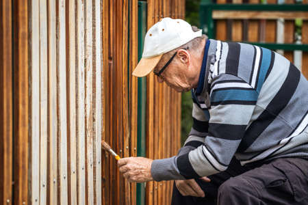 Senior man painting wooden fence in garden. Old craftsman working at backyard. Repairing picket fence