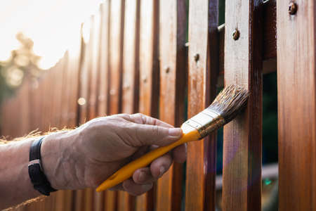 Paint wood stain. Painting protective varnish on wooden picket fence at backyard