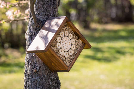 Insect hotel or house on tree in garden 免版税图像