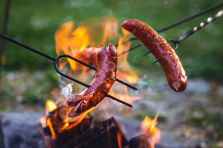 Roasting sausage over campfire. Grilling sausages for dinner at camping