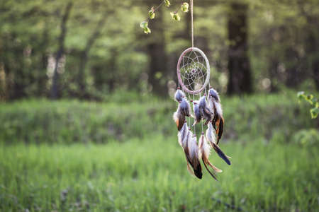 Dreamcatcher is hanging in forest. American native indigenous ritual amulet 免版税图像