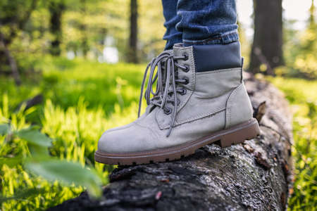 Hiking boot on tree trunk. Closeup leather sport shoes in forest