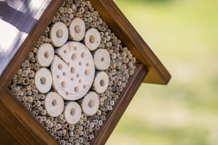 Closeup insect hotel or house on tree in garden. Selective focus