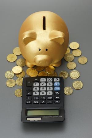 piggy bank with calculator