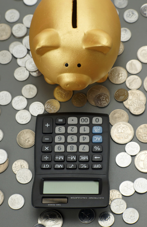 piggy bank with calculator. financial concept