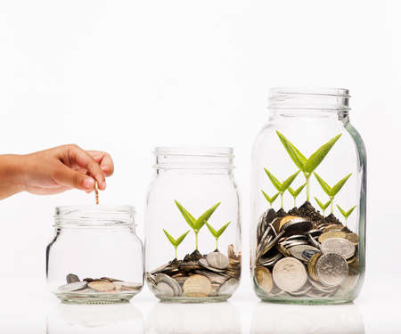 secure growth: Investment growth concept,Hand putting Golden coins and seed in clear jar over white background
