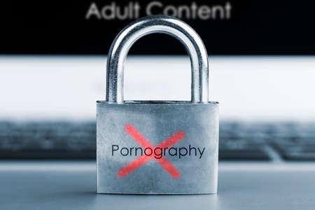 computer security concept- No Pornography