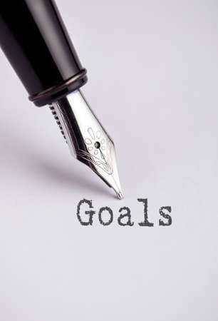 wood tick: Goals with pen written on paper