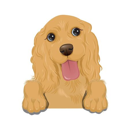 colorful vector portraits of different dog breeds isolated on white background. Vector Illustration