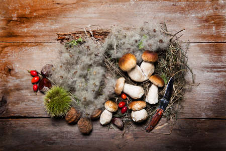 autumnal arrangement with mushrooms, rosehips, leaves, chestnuts and knife