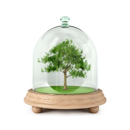 Schützen Sie die Natur. Unser Umfeld gehört, dass alle in ihm leben. Plant mehr Bäume. Seien Sie freundlich zu unserer Erde.