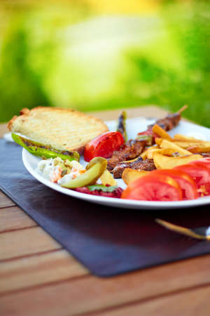 A beatiful Turkish shish kebab plate with nature scene in the background.