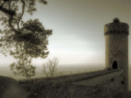 fairy tale castle with tower in germany Stock Photo