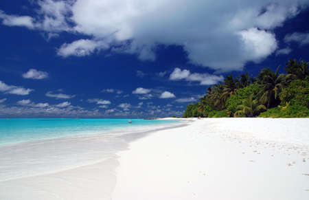 beautiful tropical beach with white sand and turquoise ocean