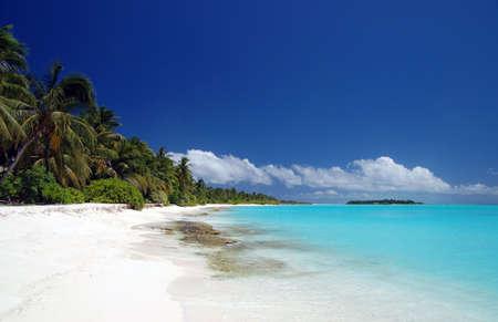 ari: Tropischer Strand auf den Malediven