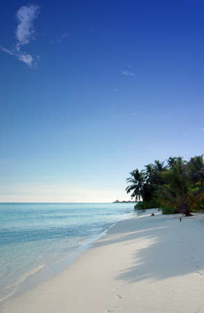 tropical coastline with white sandy beach, coconut palm trees and beautiful turquoise ocean