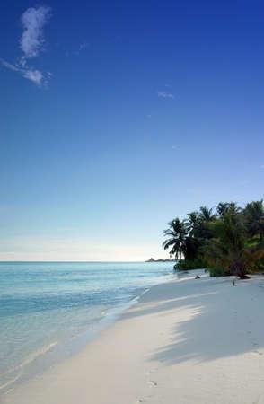 Tropische Küste mit weißen Sandstrand, Kokosnuss-Palmen und wunderschönen türkisfarbenen Ozean Standard-Bild - 1457007
