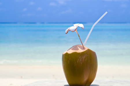 coconut drink: Tropical Coconut Cocktail in front of crystal blue ocean