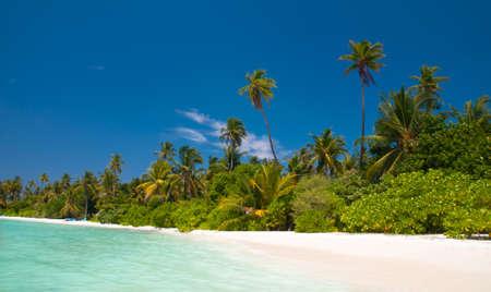 unspoilt: tropical beach Stock Photo