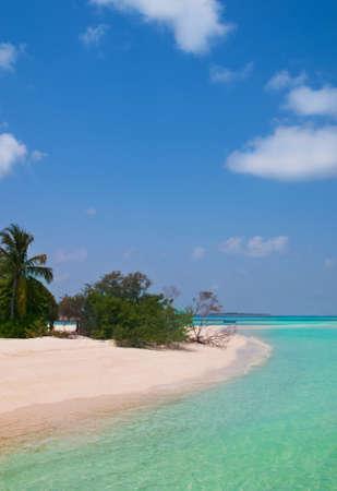 unspoilt: unspoilt tropical beach