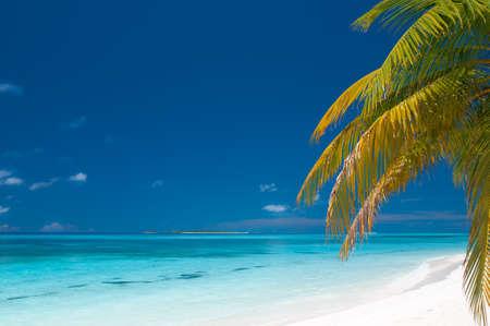 unspoilt: beautiful unspoilt tropical beach
