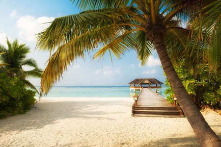 cabana: Tropical Beach on the Maldives