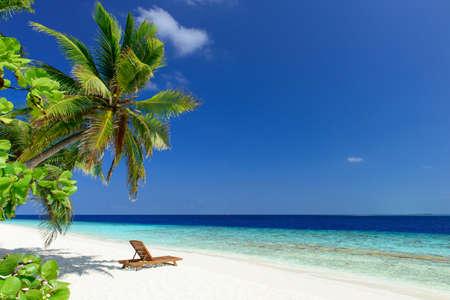 beautiful beach Reklamní fotografie - 37338864