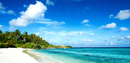tropical beach 写真素材