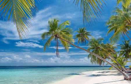 unspoilt: beautiful unspoilt beach
